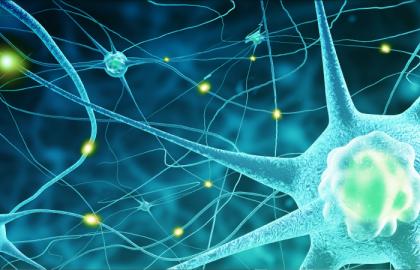 אבחון וטיפול בעידן החדש – NMOSD